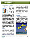 0000090823 Word Template - Page 3