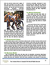 0000090833 Word Template - Page 4