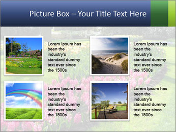 The Netherlands PowerPoint Template - Slide 14