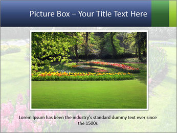 The Netherlands PowerPoint Template - Slide 15