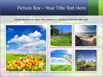 The Netherlands PowerPoint Template - Slide 19