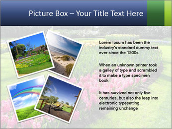 The Netherlands PowerPoint Template - Slide 23