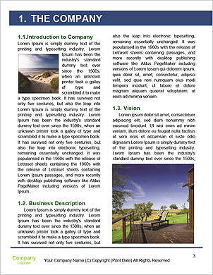 0000090838 Word Template - Page 3