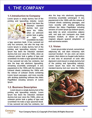 0000090853 Word Template - Page 3