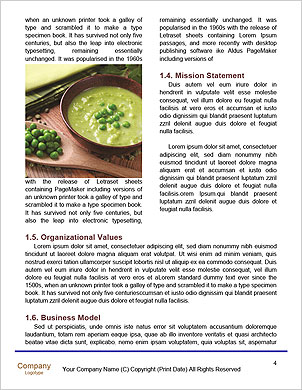 0000090853 Word Template - Page 4