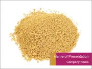 A pile of soy lecithin granules PowerPoint Templates