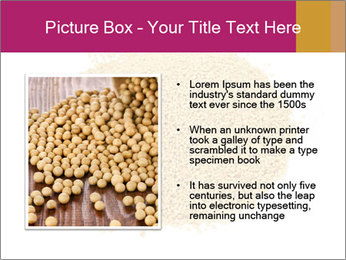 A pile of soy lecithin granules PowerPoint Template - Slide 13