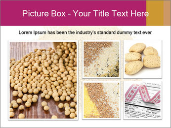 A pile of soy lecithin granules PowerPoint Template - Slide 19