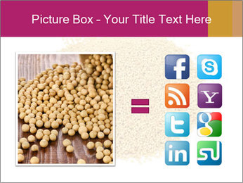 A pile of soy lecithin granules PowerPoint Template - Slide 21