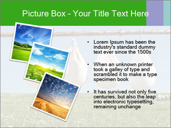 Cheese production PowerPoint Template - Slide 17