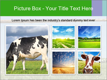 Cheese production PowerPoint Template - Slide 19