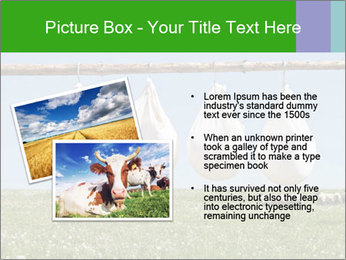 Cheese production PowerPoint Template - Slide 20