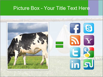 Cheese production PowerPoint Template - Slide 21