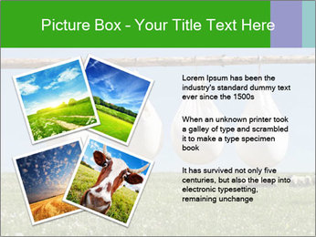 Cheese production PowerPoint Template - Slide 23
