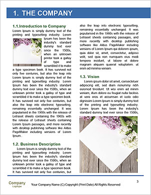 0000090874 Word Template - Page 3