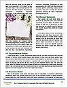 0000090874 Word Template - Page 4