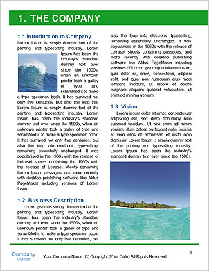 0000090882 Word Template - Page 3