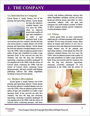 0000090885 Word Template - Page 3