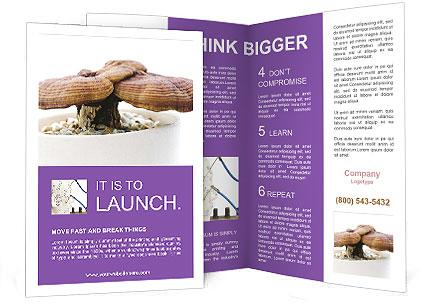 0000090893 Brochure Templates