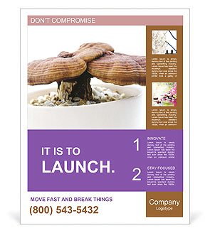 0000090893 Poster Template
