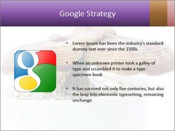 Chinese Mushroom PowerPoint Template - Slide 10