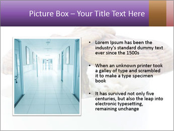 Chinese Mushroom PowerPoint Templates - Slide 13