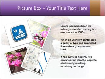 Chinese Mushroom PowerPoint Template - Slide 23