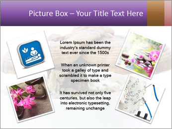 Chinese Mushroom PowerPoint Template - Slide 24