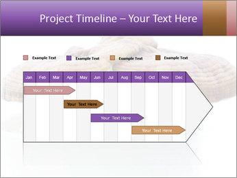 Chinese Mushroom PowerPoint Template - Slide 25