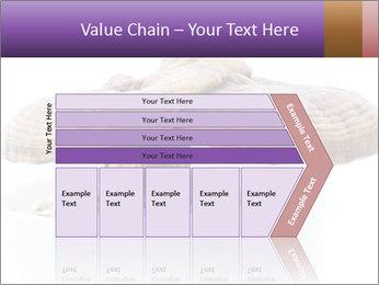 Chinese Mushroom PowerPoint Template - Slide 27