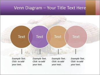 Chinese Mushroom PowerPoint Template - Slide 32