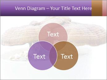 Chinese Mushroom PowerPoint Template - Slide 33