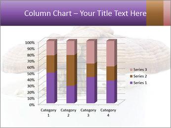 Chinese Mushroom PowerPoint Template - Slide 50