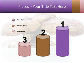 Chinese Mushroom PowerPoint Templates - Slide 65