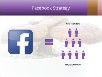 Chinese Mushroom PowerPoint Template - Slide 7