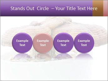Chinese Mushroom PowerPoint Template - Slide 76