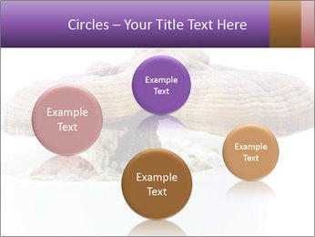 Chinese Mushroom PowerPoint Template - Slide 77