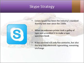 Chinese Mushroom PowerPoint Template - Slide 8