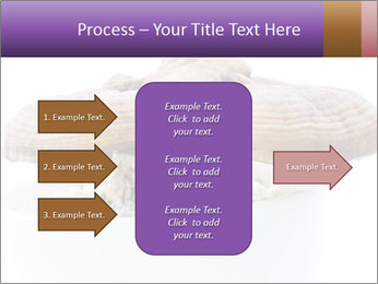 Chinese Mushroom PowerPoint Template - Slide 85