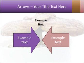Chinese Mushroom PowerPoint Template - Slide 90