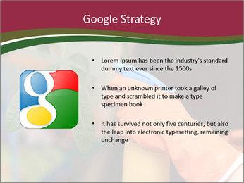 Man Spraying Plants PowerPoint Templates - Slide 10