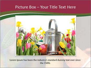 Man Spraying Plants PowerPoint Template - Slide 15
