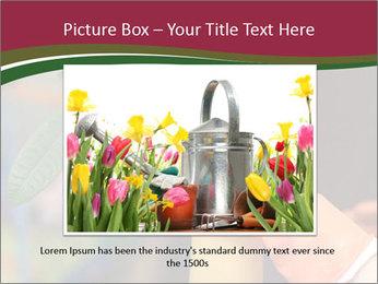 Man Spraying Plants PowerPoint Templates - Slide 15