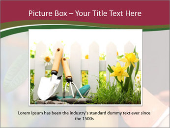 Man Spraying Plants PowerPoint Template - Slide 16