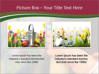Man Spraying Plants PowerPoint Template - Slide 18