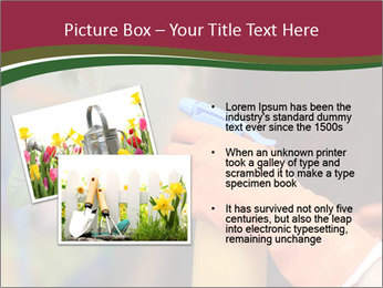 Man Spraying Plants PowerPoint Template - Slide 20