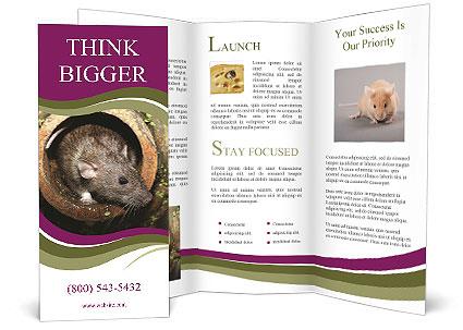 0000090911 Brochure Template