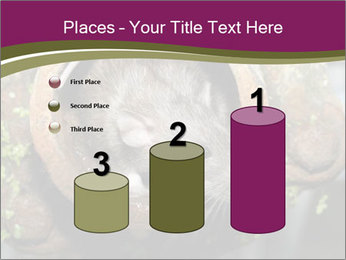 Brown Rat PowerPoint Templates - Slide 65