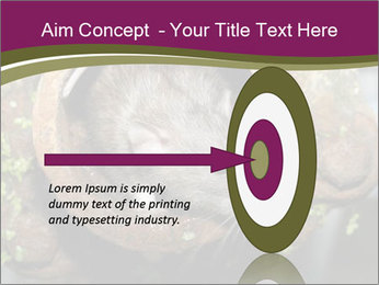 Brown Rat PowerPoint Templates - Slide 83