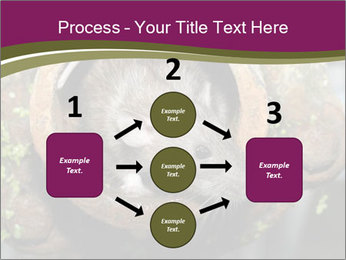 Brown Rat PowerPoint Templates - Slide 92